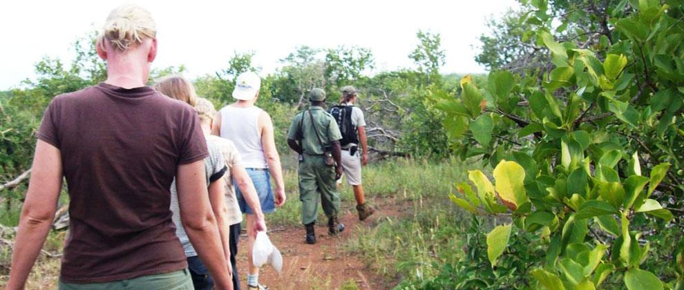 Walking safaris at Limpopo National Park