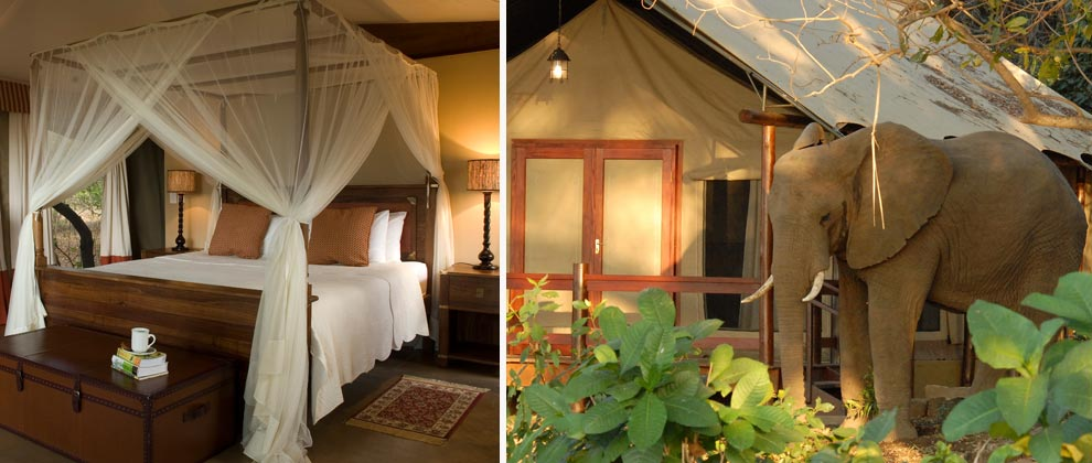 Tented camp at Lugenda Wilderness Camp