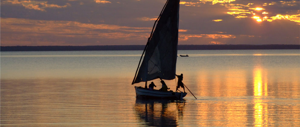 Dhow sailing at sunset