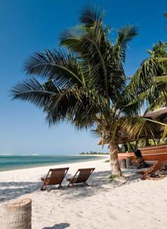 Deck chairs on a tropical beach
