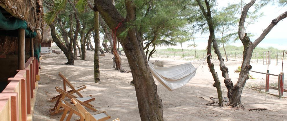 Hammock and chill out spot at Nordins