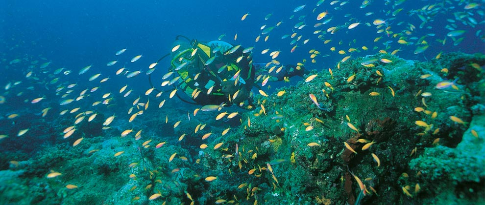 scuba diving in the Quirimbas Archipelago
