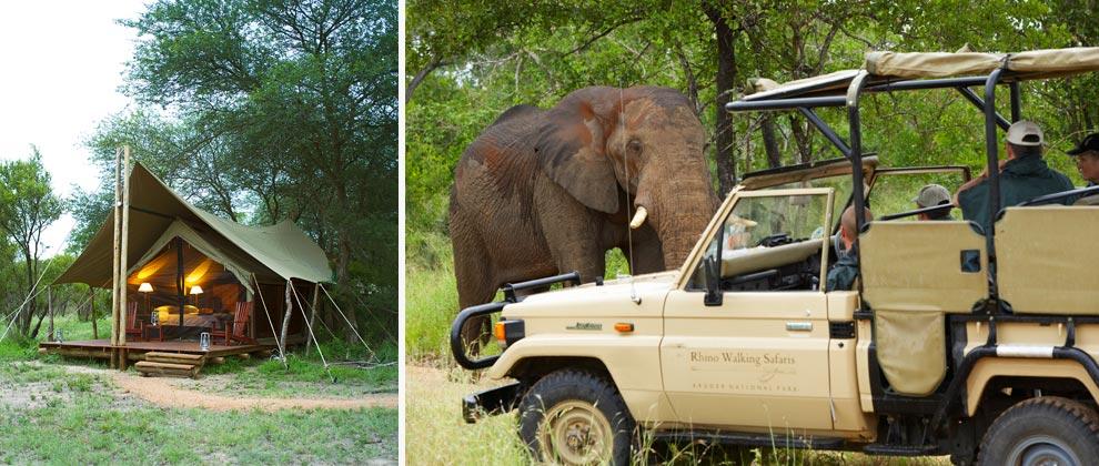 Vehicle safari